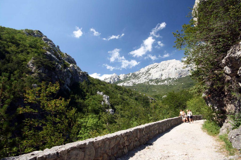 Blick vom befestigten Wanderweg